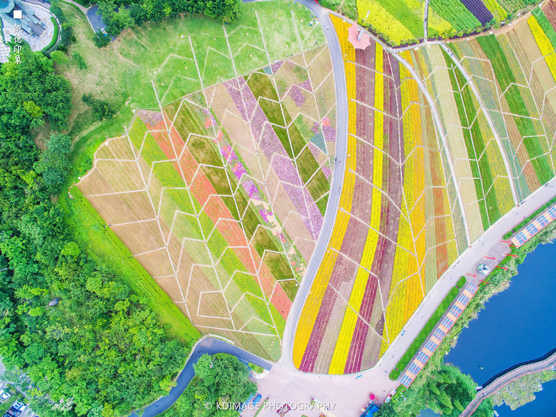 广州旅游攻略图片61