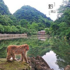 """贵州旅游""""美食景点""""介绍"""